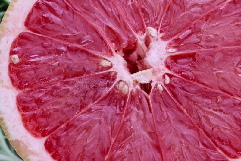 Grapefruit Fruit Vegetable veggie macro vitamines background. Vegetable veggie macro background structure texture organic healthy green fruit natural detox farm stock photo