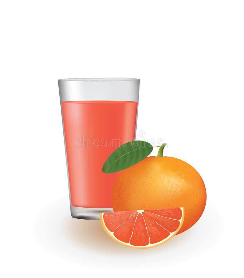 Grapefruit juice met verse grapefruit stock illustratie