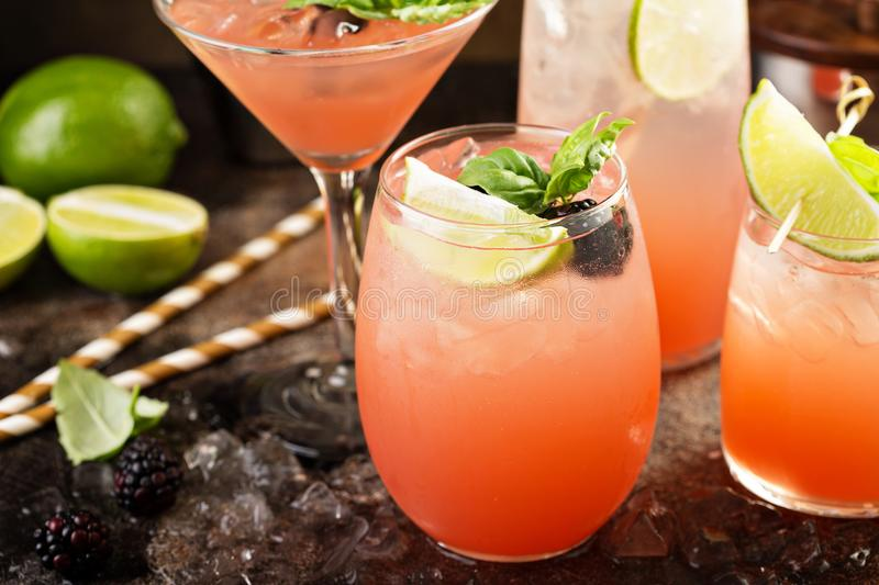 Grapefruit and lime cocktails. In different glasses and bartender tools royalty free stock image