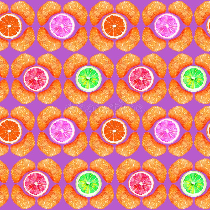 Grapefruit, orange, lime and lemon, tangerine sections, slices in geometrical form on purple background royalty free illustration