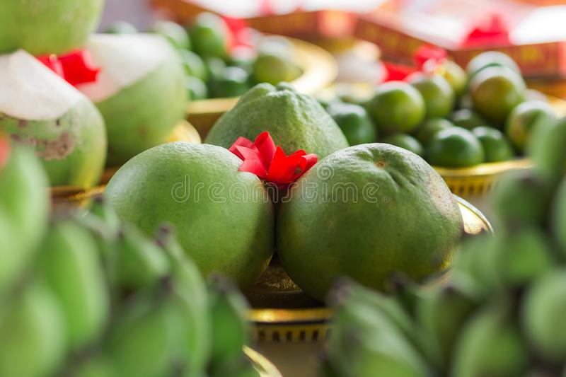 Grapefruit for procession wedding ceremony of Thailand stock photo