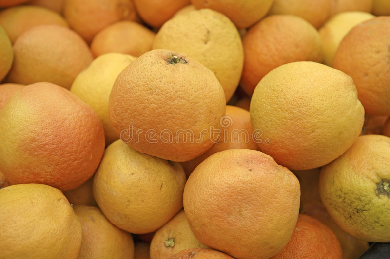 Grapefruit For Sale stock image