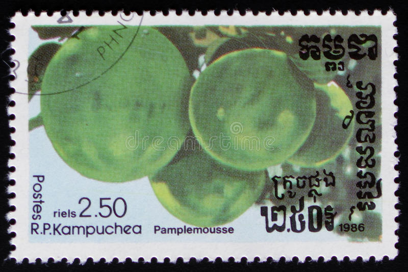 Grapefruit a series of images `Exotic fruits` circa 1986. MOSCOW, RUSSIA - FEBRUARY 19, 2017: A stamp printed in Kampuchea shows Grapefruit a series of images ` royalty free stock image