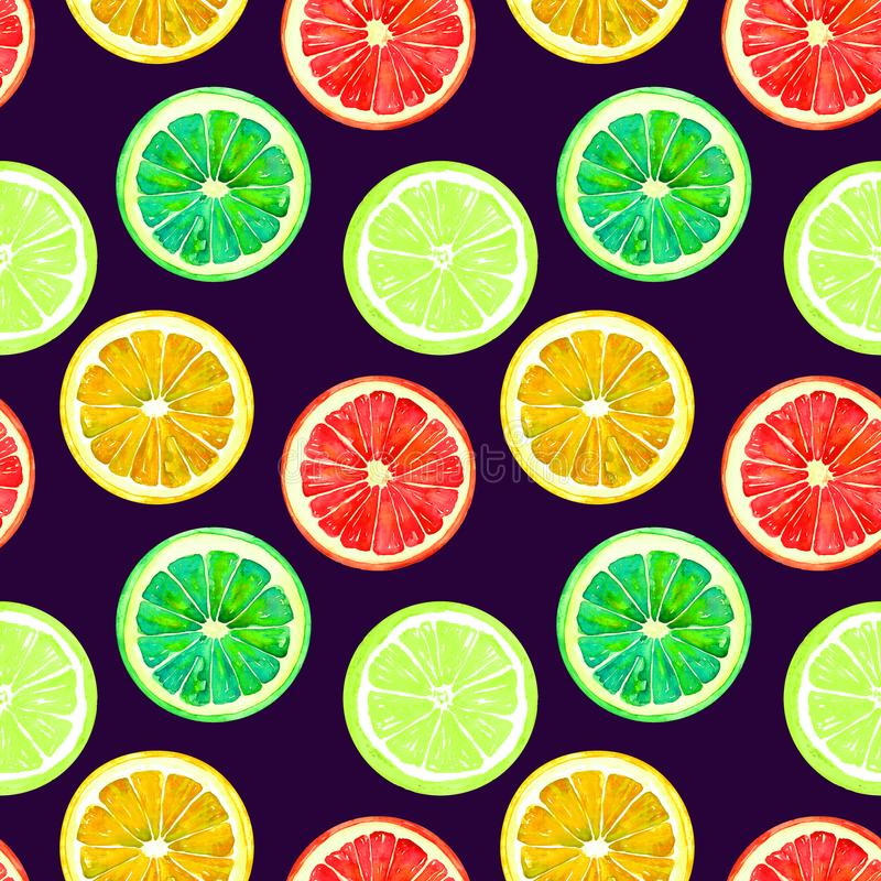 Grapefruit, sinaasappel, kalk en citroen op donkerblauwe achtergrond royalty-vrije illustratie