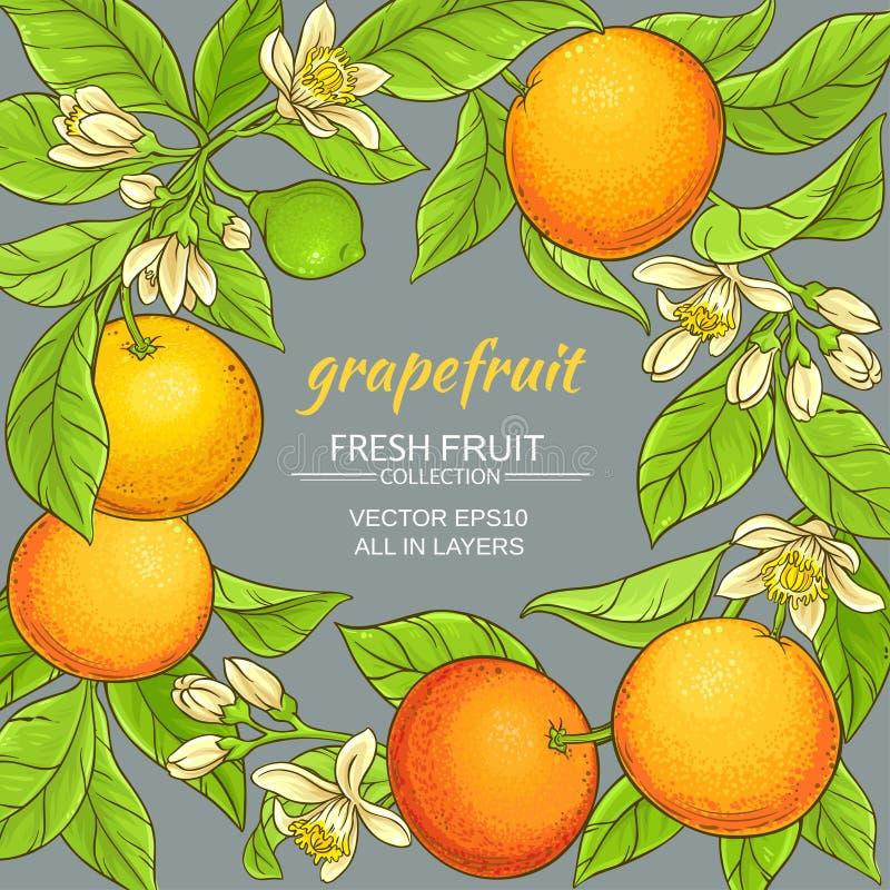 Grapefruit vectorkader stock illustratie