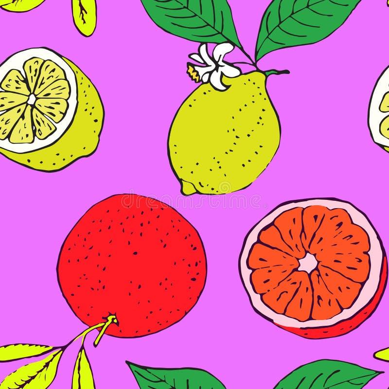 Grapefruitowy i cytryno, bezszwowy deseniowy projekt na jaskrawym purpurowym tle royalty ilustracja