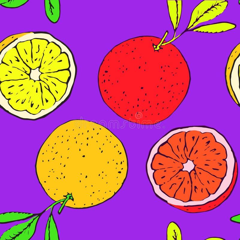 Grapefruitowy i pomarańcze, bezszwowy deseniowy projekt na jaskrawym purpurowym tle royalty ilustracja