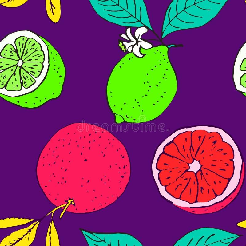 Grapefruitowy i wapno, bezszwowy deseniowy projekt na ciemnym purpurowym tle royalty ilustracja