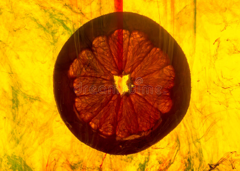 Download Grapefruitowy Plasterek W Wodzie Obraz Stock - Obraz złożonej z cytrusy, desery: 53787971
