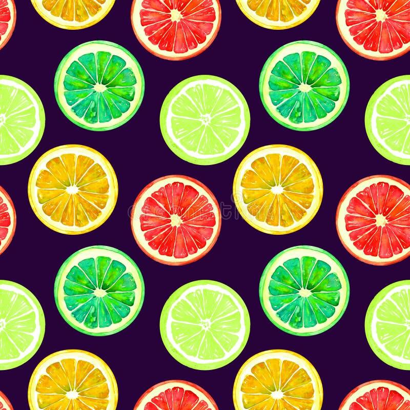 Grapefruitowy, pomarańczowy, wapno i cytryno na zmroku, - błękitny tło royalty ilustracja