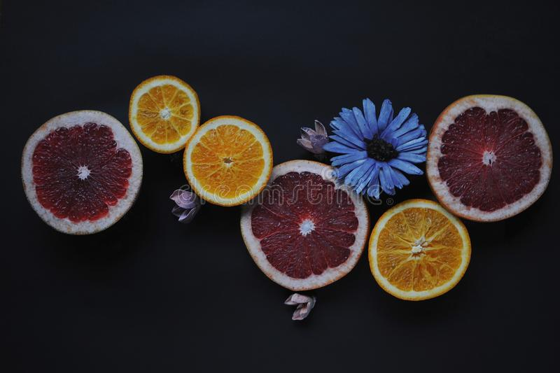 Grapefruits and oranges on black background. Fruits with flowers. Top view of fruit slices. Red, orange, yellow fruits with blue and pink marguerites stock photography