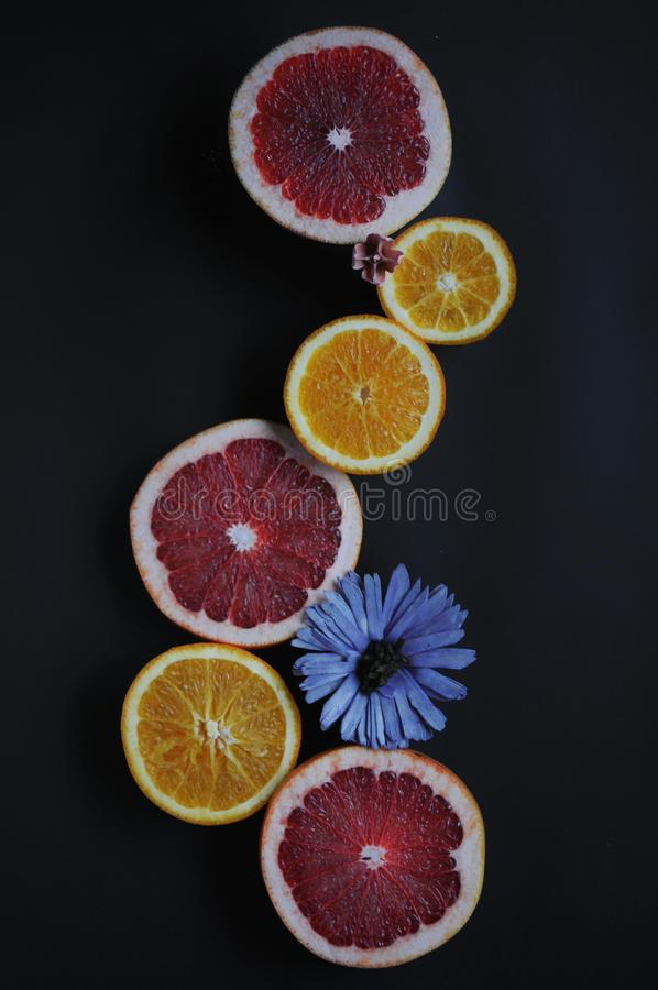 Grapefruits and oranges on black background. Fruits with flowers. Top view of fruit slices. Red, orange, yellow fruits with blue and pink marguerites stock photo