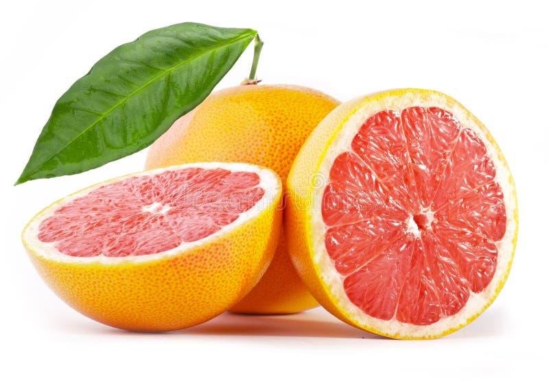 grapefrukt arkivfoto