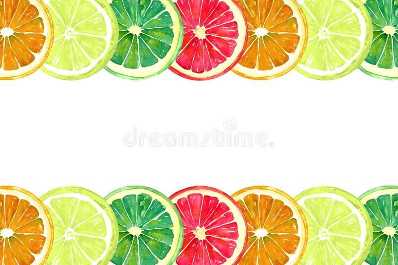 Grapefrukt, apelsin, limefrukt och citron, horisontallinjer stock illustrationer