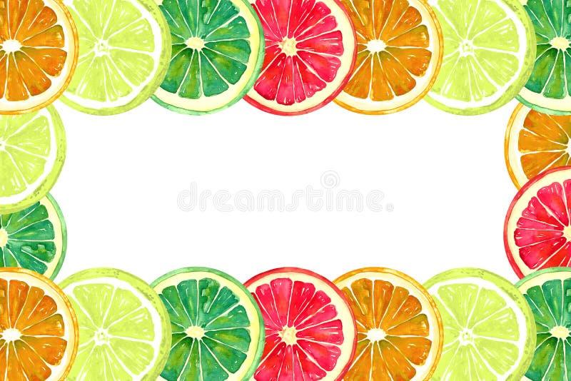 Grapefrukt, apelsin, limefrukt och citron, horisontalram för hälsningkort eller banerdesign royaltyfri illustrationer