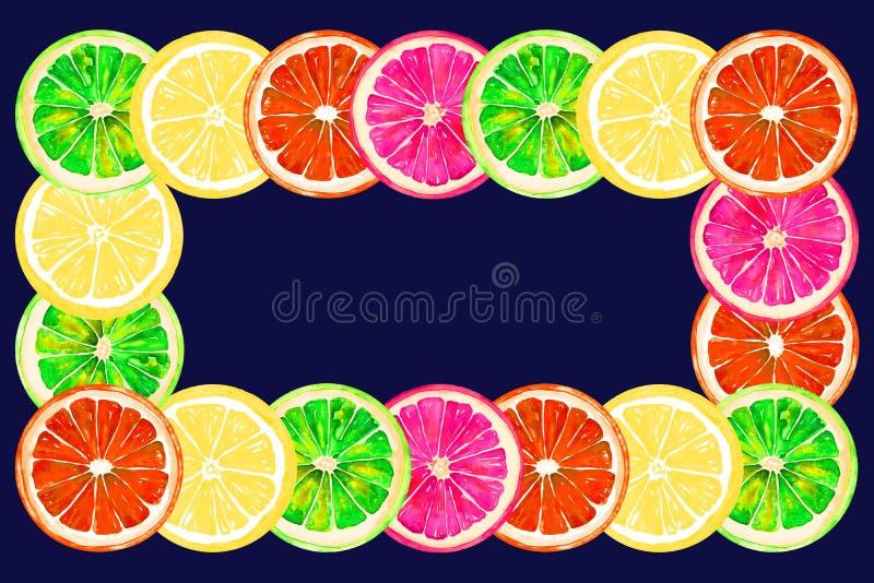 Grapefrukt, apelsin, limefrukt och citron, horisontalramhälsningkort eller banerdesign på mörker - blå bakgrund royaltyfri illustrationer