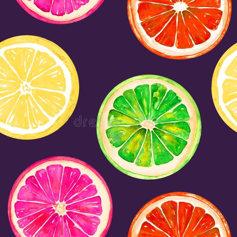 Grapefrukt, apelsin, limefrukt och citron på mörker - blå bakgrund stock illustrationer