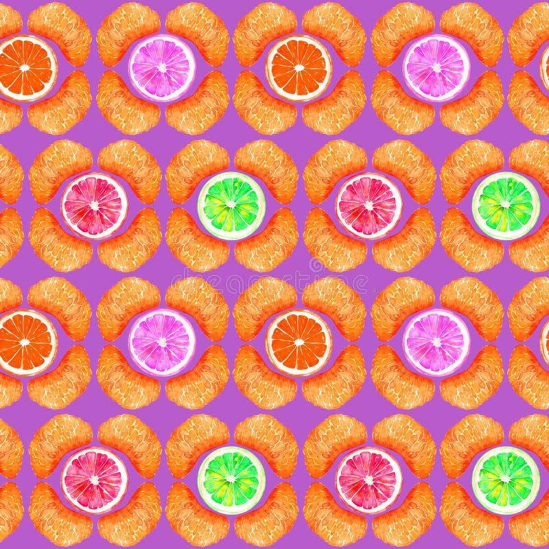 Grapefrukt, apelsin, limefrukt och citron, tangerinavsnitt, skivor i geometrisk form på purpurfärgad bakgrund royaltyfri illustrationer