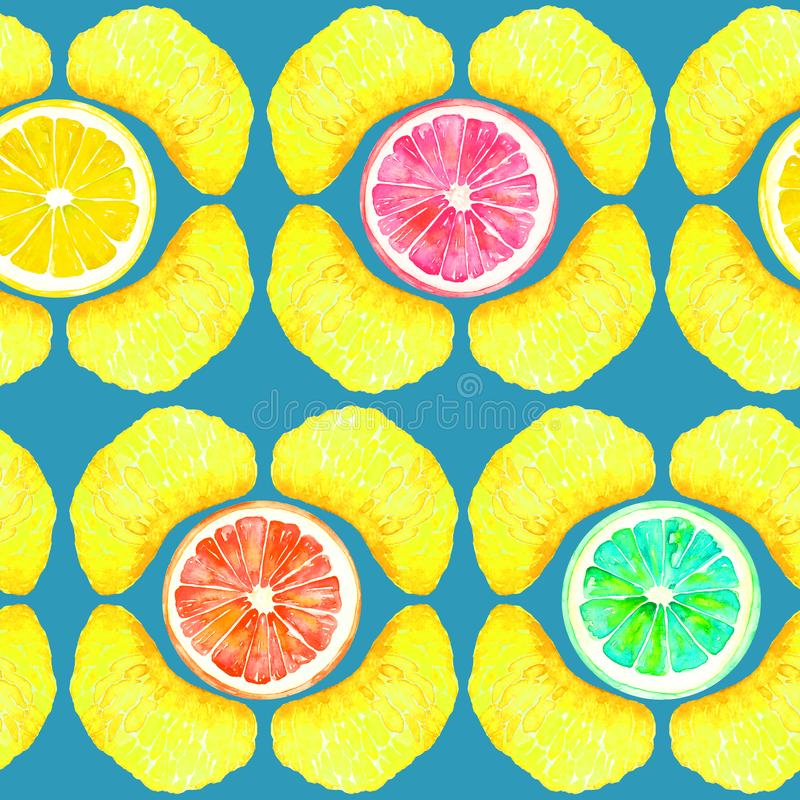 Grapefrukt, apelsin, limefrukt och citron, tangerinavsnitt, skivor i geometrisk form på turkosbakgrund stock illustrationer