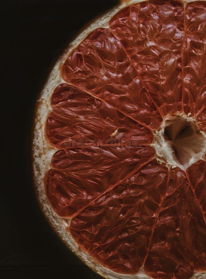 Grapefrukt i mörkret royaltyfri foto