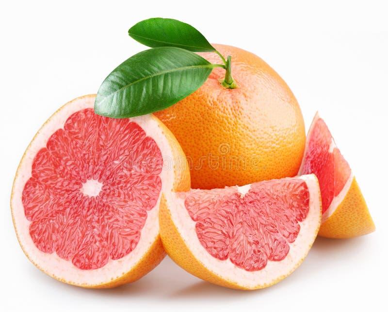 grapefruktleavessegment royaltyfri fotografi