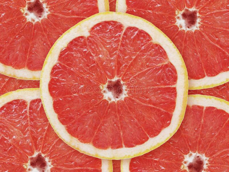 grapefruktred arkivbild