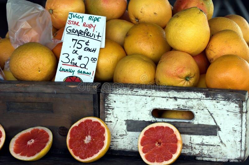 grapefruktredruby royaltyfri bild