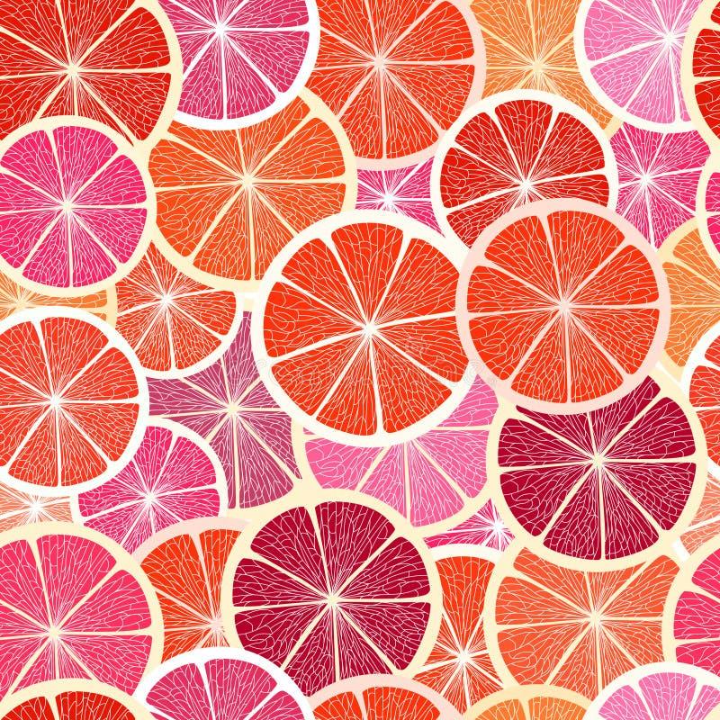 grapefruktsegment stock illustrationer