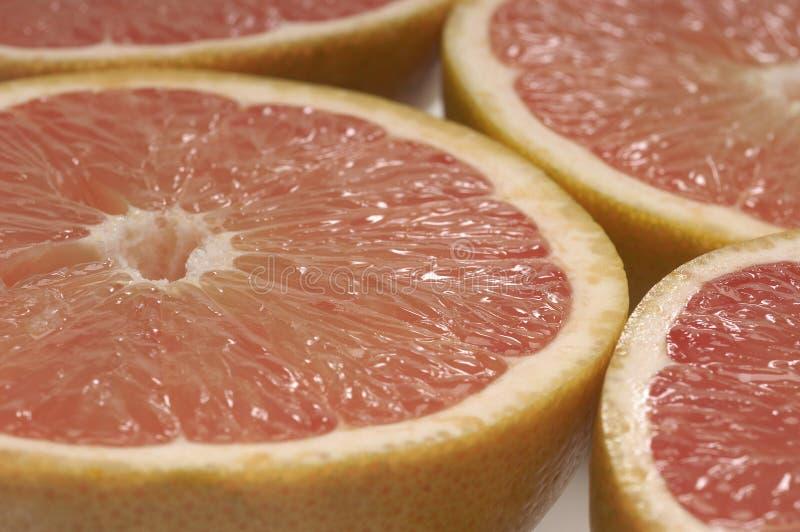 Grapefruktskivor arkivfoto