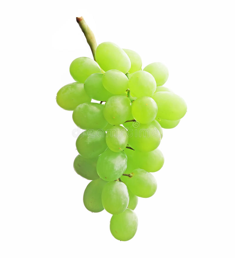 Download Grapes Stock Photo - Image: 10113340