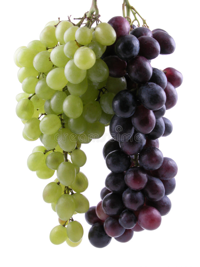 Grapes. Bunch of dark and white grapes isolated on white stock images