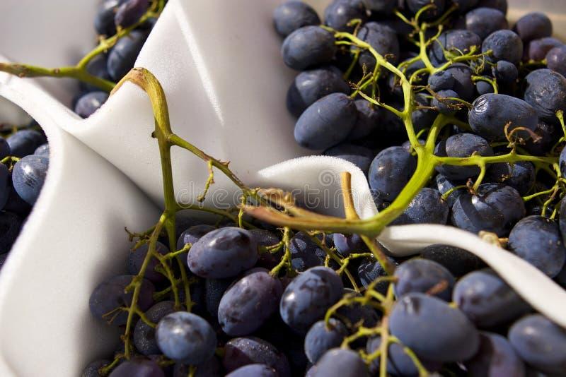 Download Grapes Royalty Free Stock Photos - Image: 13685048