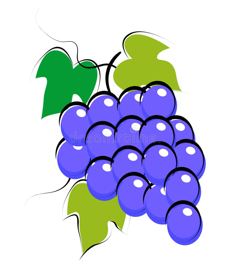 Grapes. Simple illustrations of grapes on white background stock illustration
