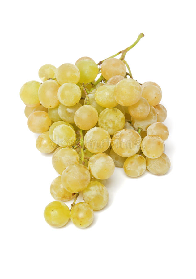 Grapes. Yellow grapes isolated on a white background, closeup stock photo