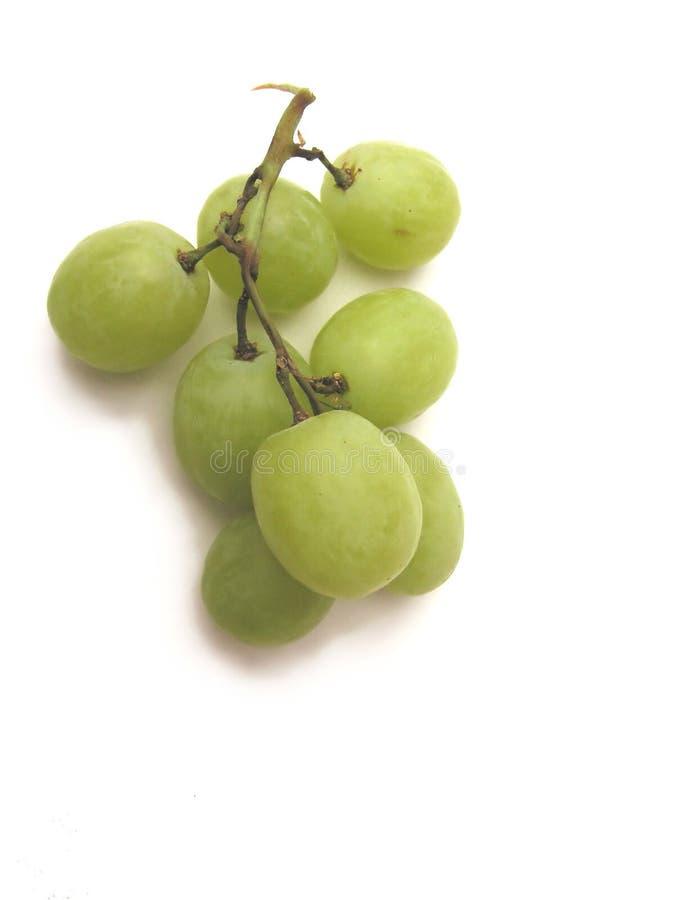 Download Grapes stock photo. Image of still, fresh, white, studio - 225560