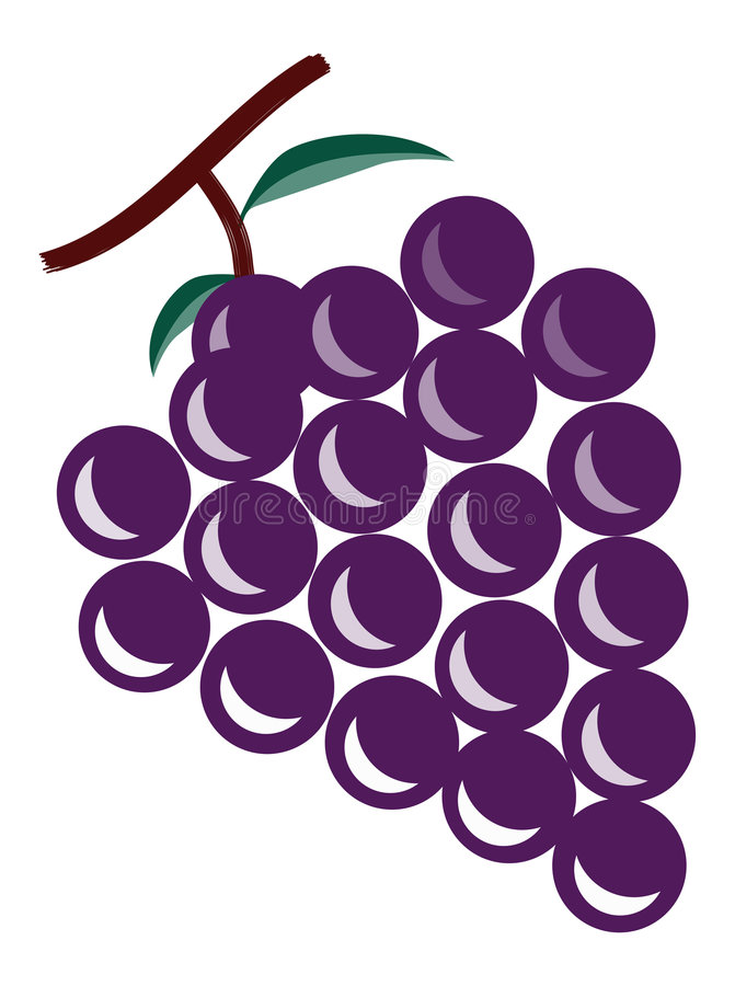 The grapes stock illustration