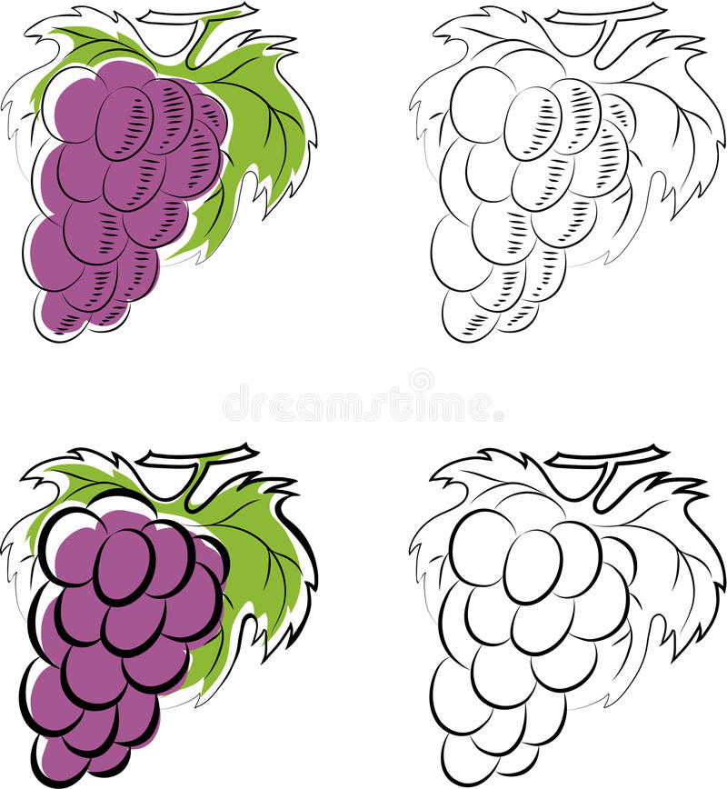 Download Grapes stock vector. Image of floral, drawing, design - 24513101