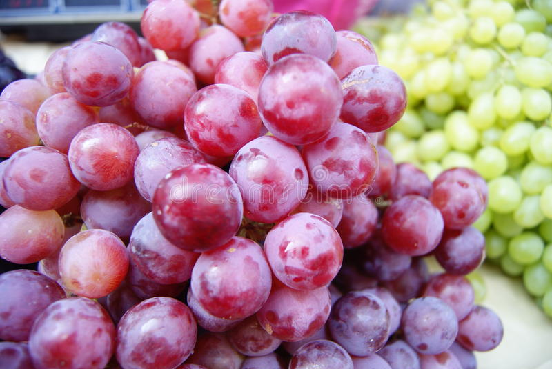 Download Grapes stock image. Image of life, business, green, agricultural - 26852377