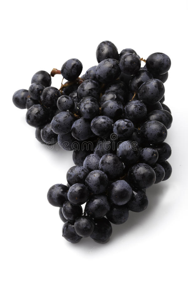 Download Grapes stock photo. Image of grape, white, background - 27091990
