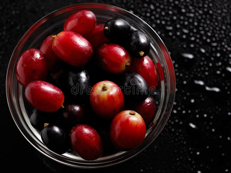 Download Grapes stock image. Image of vitamin, meal, agriculture - 27404263