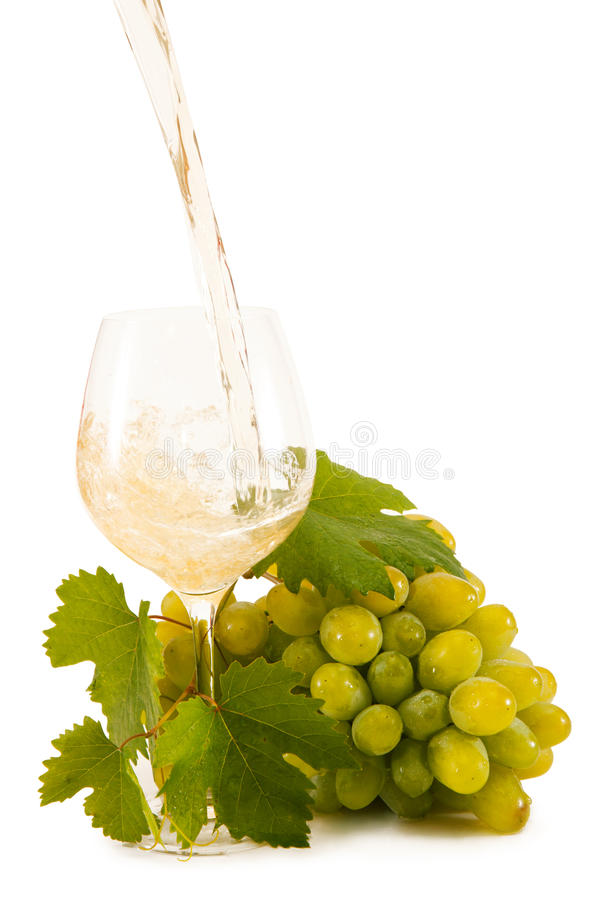 Download Grapes stock photo. Image of life, berry, fruit, gourmet - 27868056