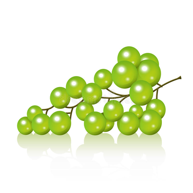 Download Grapes Royalty Free Stock Photos - Image: 29629638