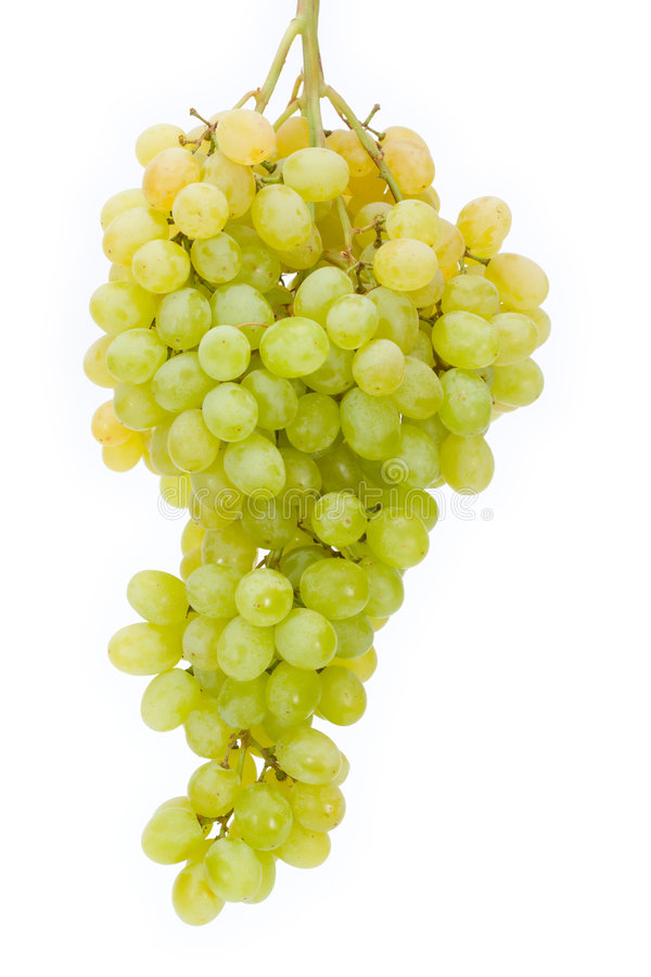 Grapes. Cluster of a grapes on a white isolated background royalty free stock photo