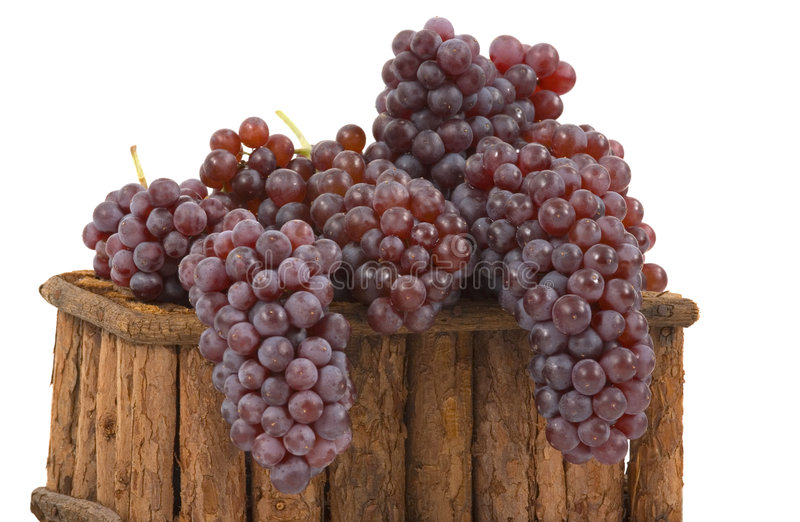 Grapes. Gourmet champagne grapes in a basket royalty free stock photo