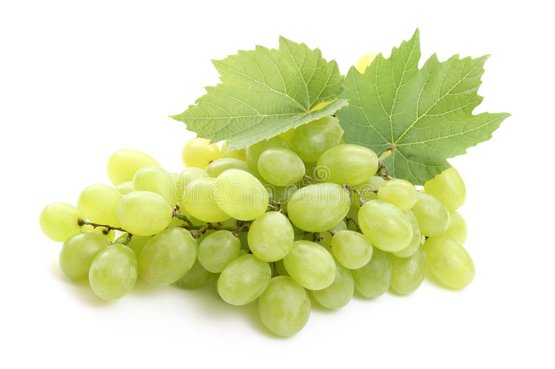 Grapes. Bunch of fresh grapes and leaves isolated on white stock photos