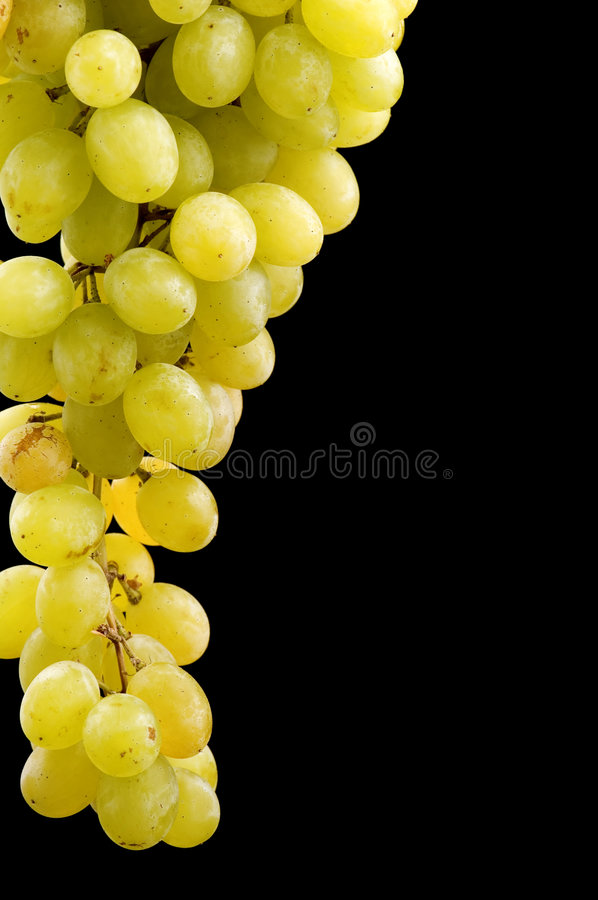 Grapes On Black Royalty Free Stock Images