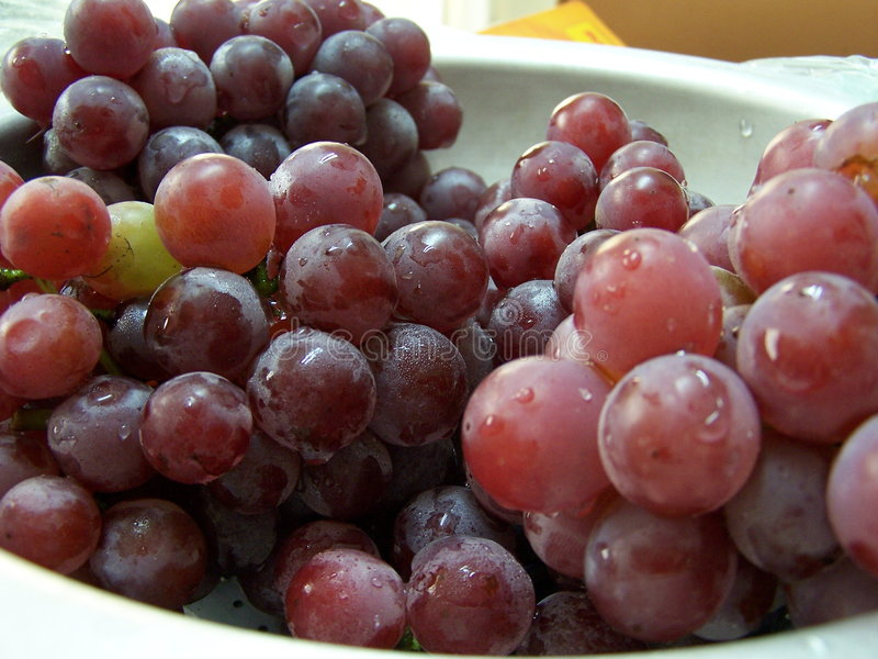 Download Grapes in a bowl stock image. Image of food, dessert, vegetable - 165017