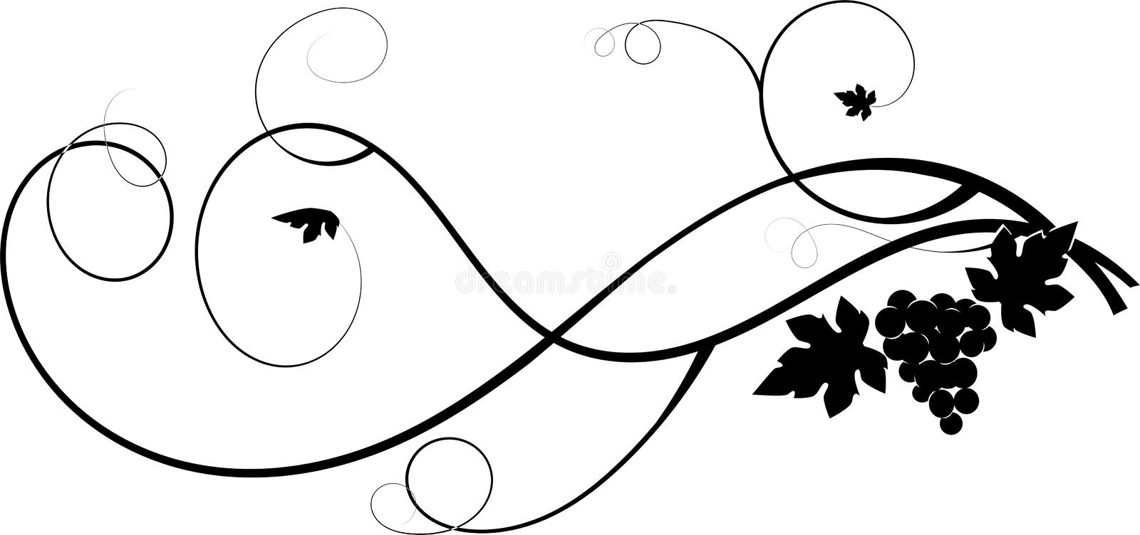 Grapes. Bunch of black grapes with leaves royalty free illustration