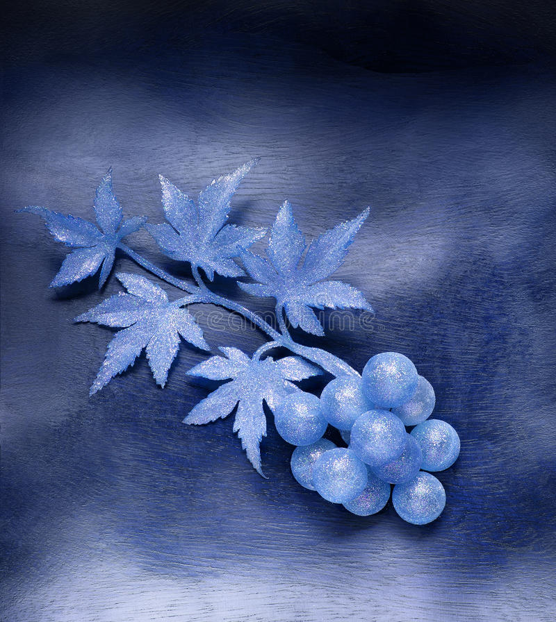 Grapes. Fantasy motive royalty free stock images