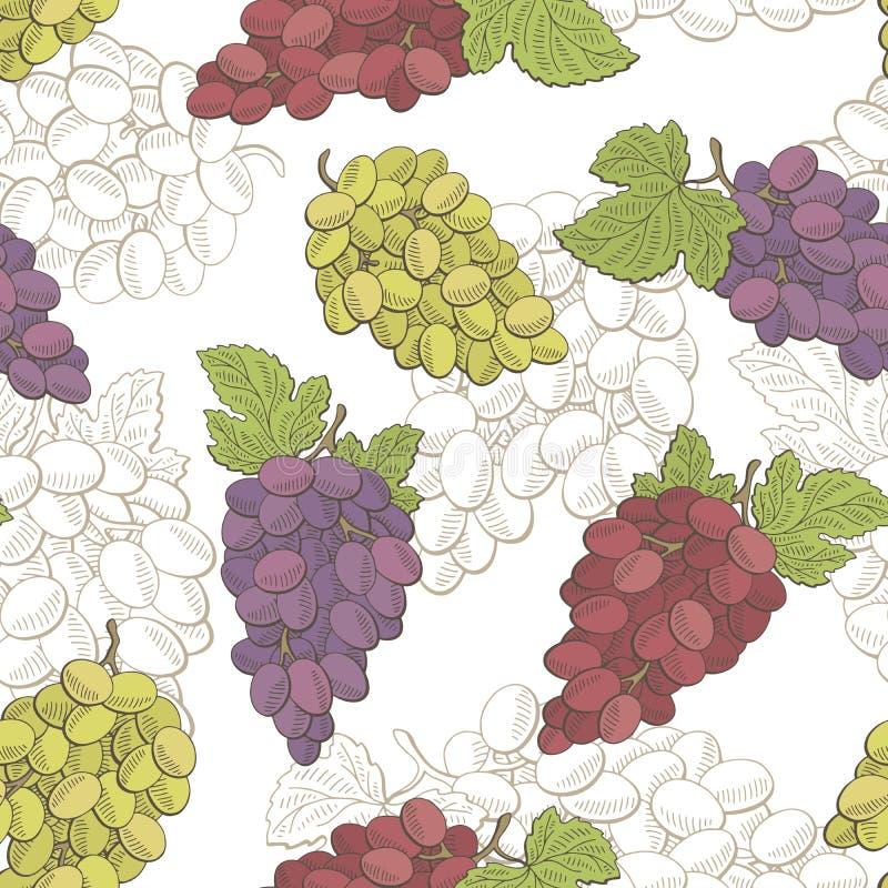 Grapes fruit graphic color seamless pattern sketch illustration. Vector vector illustration